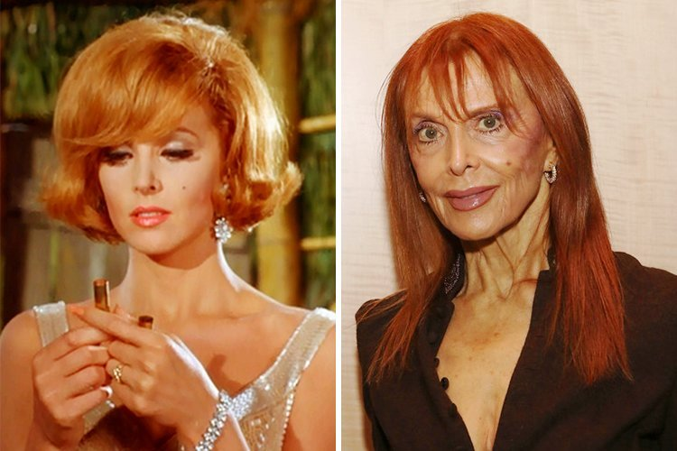 Stars That Have Aged Flawlessly Some Of Them Live
