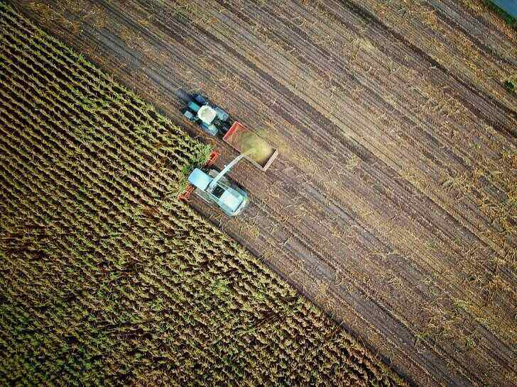 agriculture-job-1